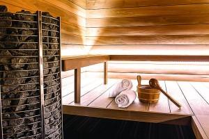 saune IDUS